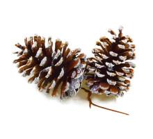 Натуральные шишки на елку, 2шт