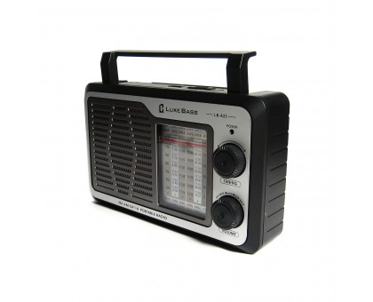 """Сетевой переносной радиоприемник """"Luxe Bass"""", модель LB-A23"""