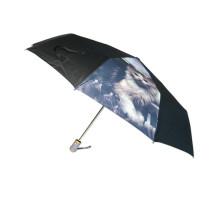 "Женский зонт PASIO, автомат. В упаковке 6 рисунков ""Кошки"""